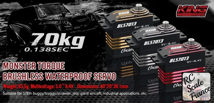 RC Scale france - Portail King70kg-01