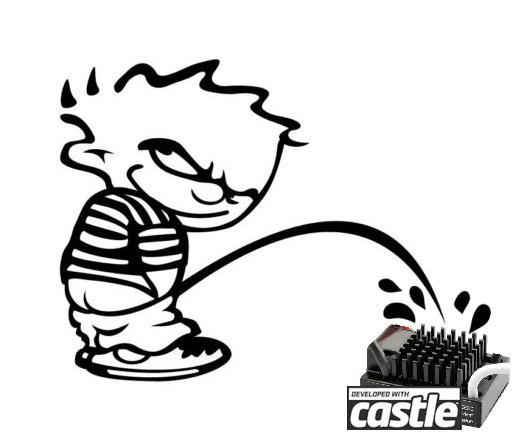 Choix du vario waterplouf pour moteur Brushed. Castle_grand