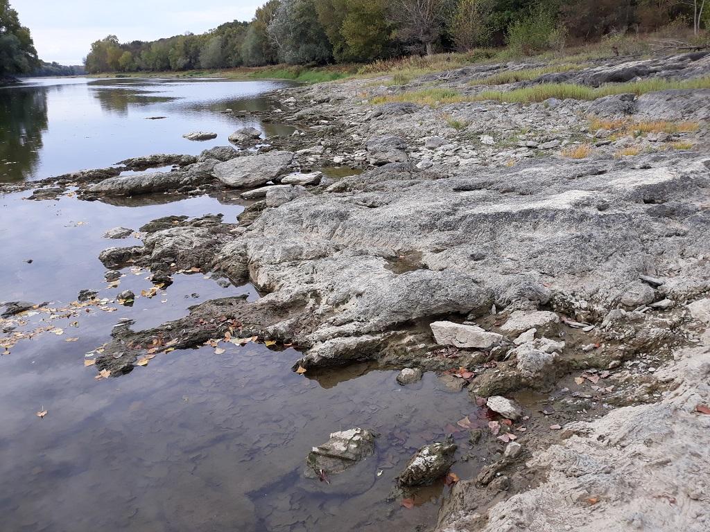 [49 - Maine et Loire] Spot de Savennière 02
