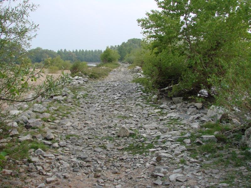 [49 - Maine et Loire] Spot d' Ancenis 03