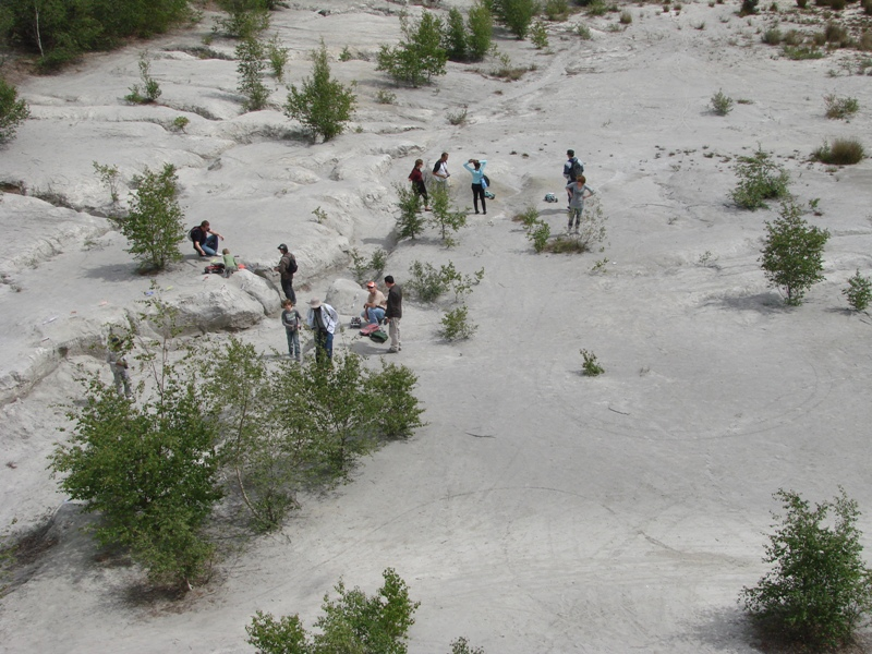 Rassemblement Internationnal Scale a Abbaretz le 11 et 12 Juin 2011 (Photos et vidéo P.20 & 21) - Page 16 10