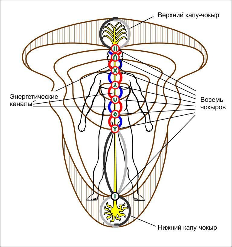 9 чакр шаманский взгляд  Aura_shaman2