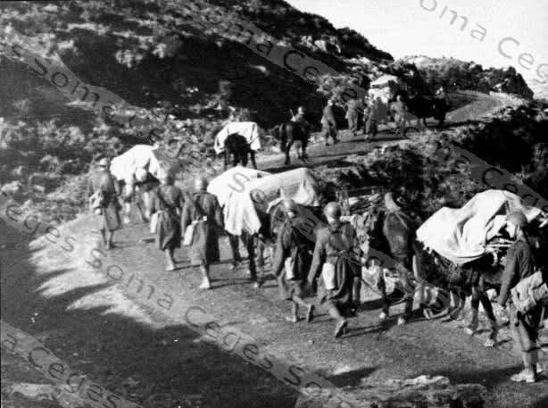 Occupation italienne en Corse (20) Vhtg1v