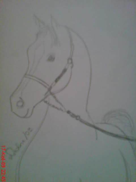 Crteži (vaši radovi)- samo slike 30rntwk