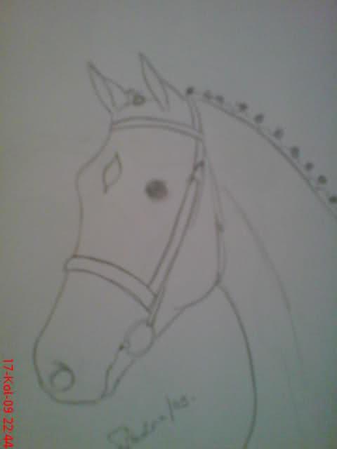 Crteži (vaši radovi)- samo slike O6l9jt