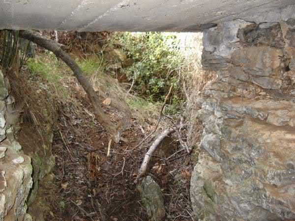 Abris caverne du Paradis (Carqueiranne, 83) 2epr8kp