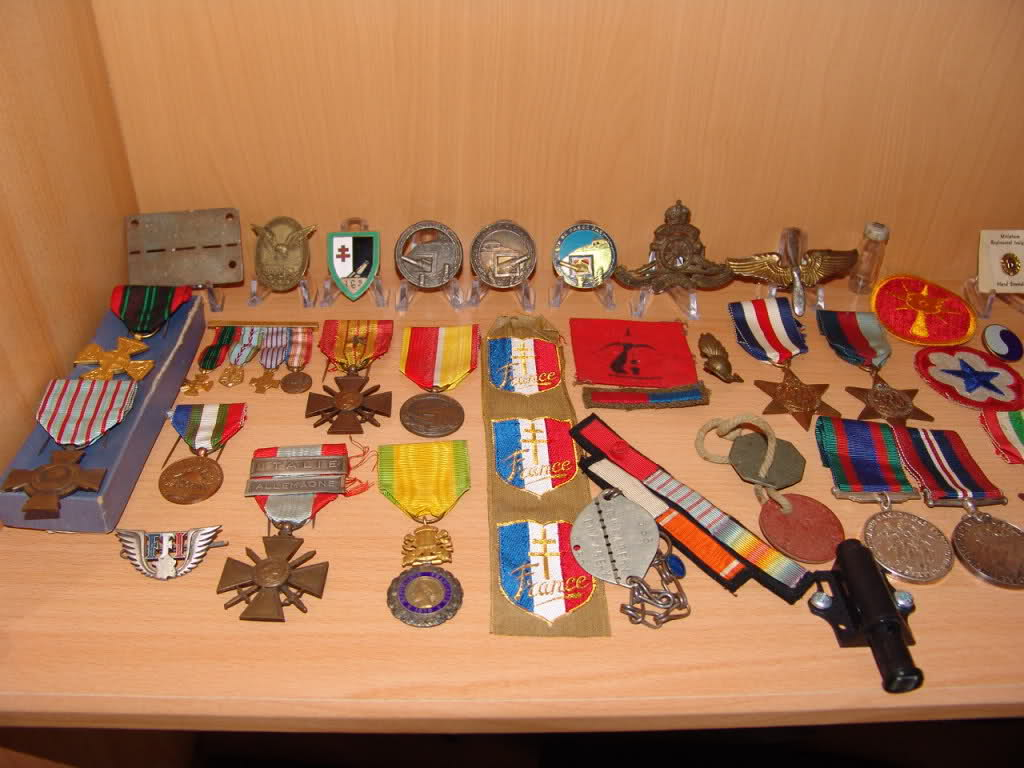 Collection Oli29 2s6a2xx