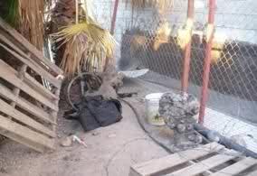 Enfrentamiento en el Boulevard Insurgentes de Tijuana (imagenes fuertes) 34q3hg1