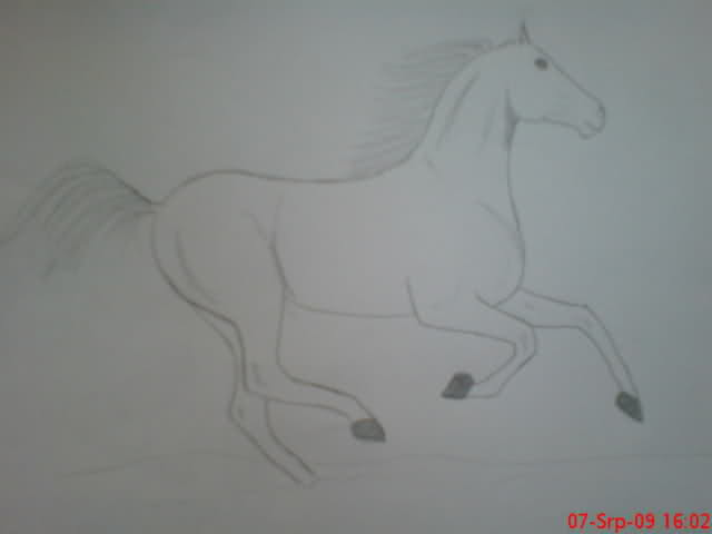 Crteži (vaši radovi)- samo slike 152yur8