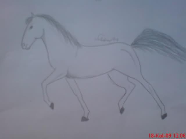 Crteži (vaši radovi)- samo slike 30nf9ci