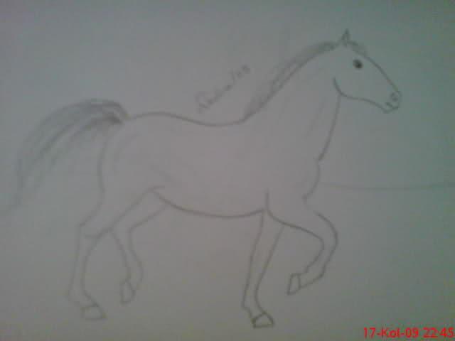 Crteži (vaši radovi)- samo slike Rw8gfm