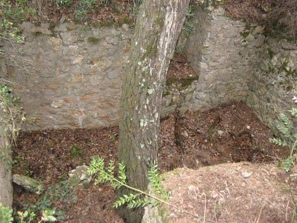 Abris caverne du Paradis (Carqueiranne, 83) 24gozde