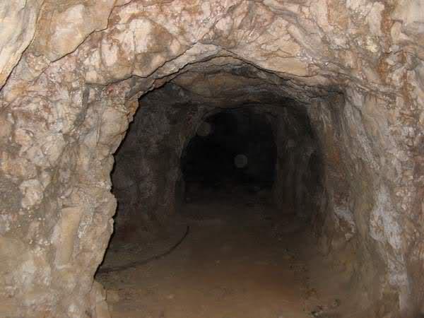 Abris caverne du Paradis (Carqueiranne, 83) 2mdl69t