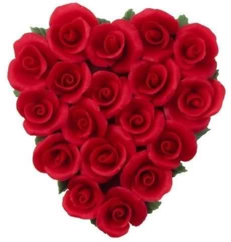 Ruža Jf7sl2