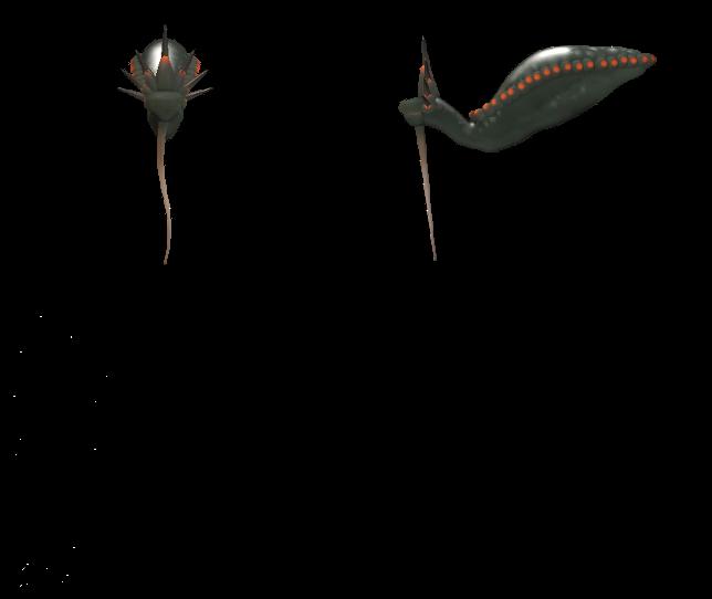 Species Archive (In progress) 1zmftl5