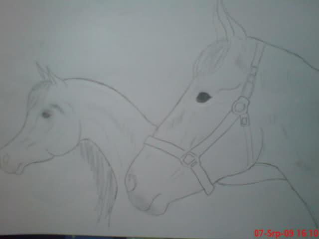 Crteži (vaši radovi)- samo slike Mwed7s