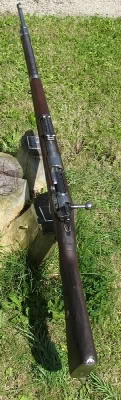 Mauser G98 de transition 14cffiw