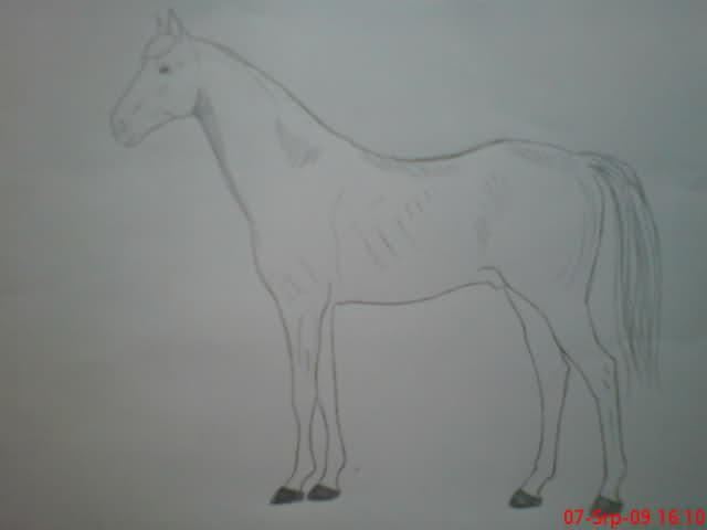 Crteži (vaši radovi)- samo slike 2ica35g