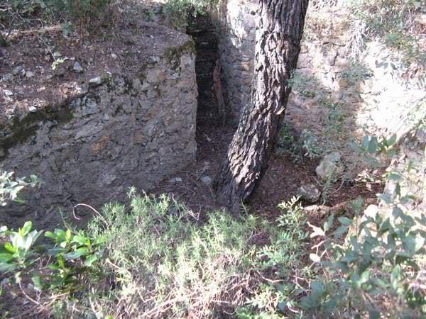 Abris caverne du Paradis (Carqueiranne, 83) E6c8cg