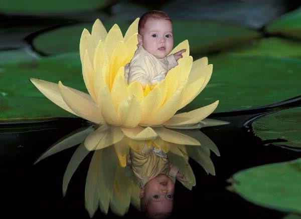 Bebekler, Tombik Bebekler, Tatlı Bebekler, baby pictures, 24l20as