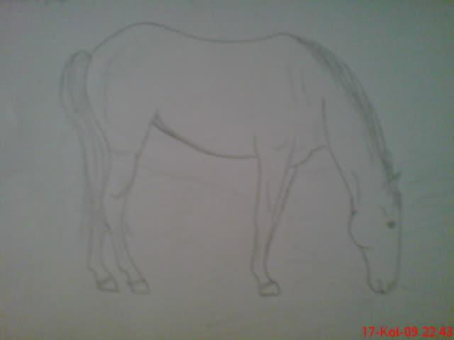 Crteži (vaši radovi)- samo slike 28jwawo