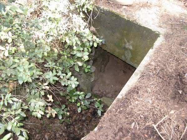 Abris caverne du Paradis (Carqueiranne, 83) Akiqo4