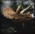 Dinosaurios Ornithischia