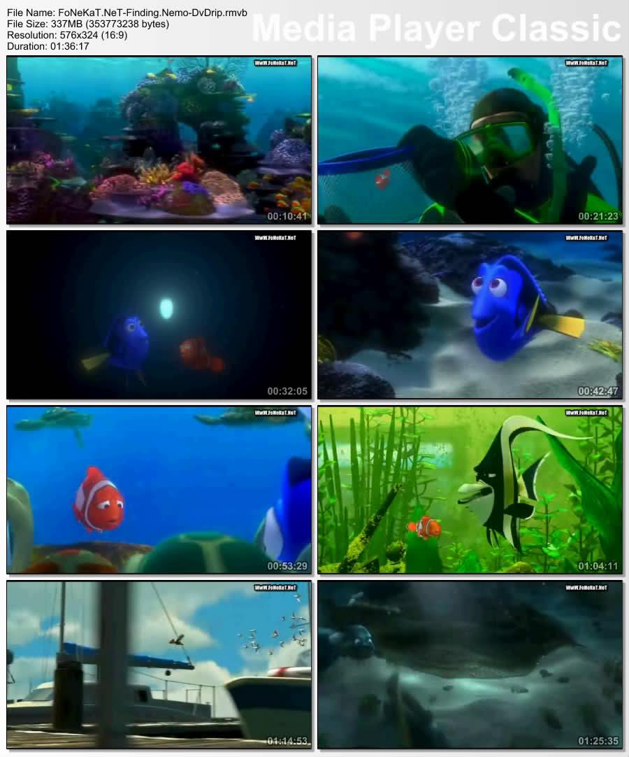 :: Finding Nemo :: مدبلج للعاميه المصريه :: 337 ميجا :: روابط مباشره Xfvp91