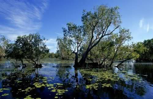 كل الجمال في قارة استراليا حيث الطبيعة الخلابة الساحرة، صور بآلاف الكلمات... 10wtdew