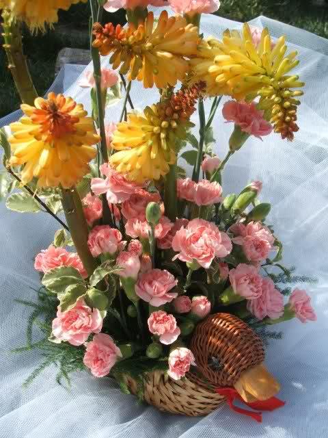 Aranjamente florale - Pagina 2 2hsapz6