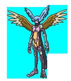 Spirit Evolution 21jq693