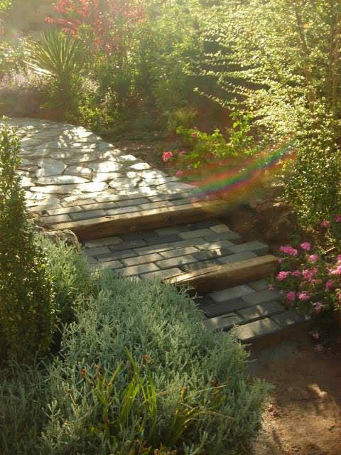 Nuestro jardín de Sa Possessió - Página 23 30l2e60