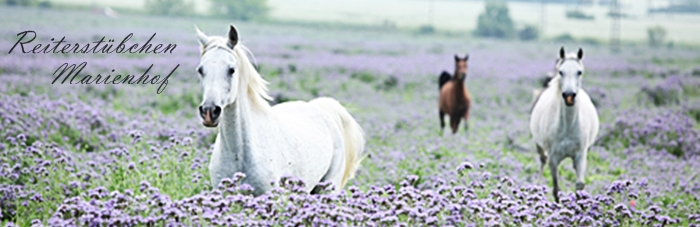 Reiterstübchen Marienhof