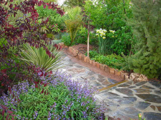 Nuestro jardín de Sa Possessió - Página 23 334ovf6