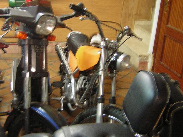 Restauración Ducati 50 TT 4V Nmdmiv