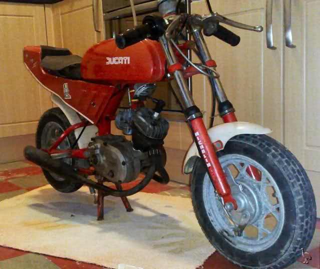 Que cantidad de ciclomotores Ducati juntos Zxvsp