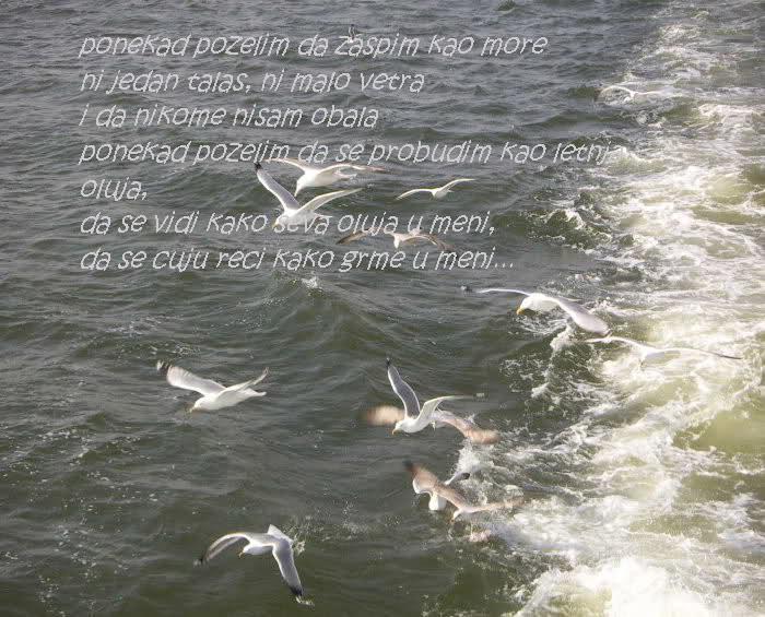 Ljubavna poezija na slici - Page 4 110je6o