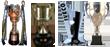 Atlético Rafaela: Campeonato B Nacional y Copa Argentina 2010/2011 - B Nacional ||| Boca Juniors: Torneo Clausura 2011/2012 y Recopa Nacional - Primera División