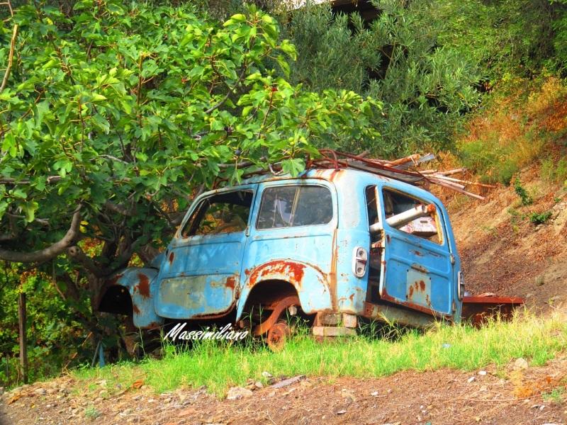 Auto Abbandonate - Pagina 40 20955qb