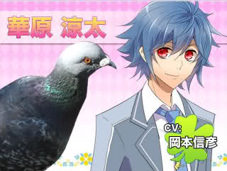 Hatoful Boyfriend [Descarga + Guía] 213ons6