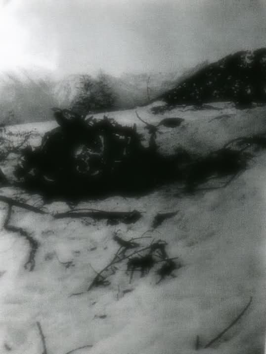 Ju 52 D-ALUS crash à Roubion (06) Fev 1939 2wqeji8