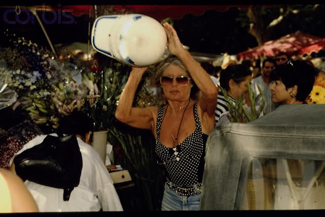 Brigitte et les paparazzi 351y5hk