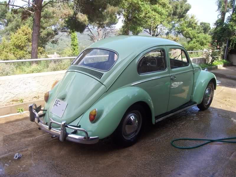 ¿Cual es vuestro colo preferido para un escarabajo? 14cbt6f