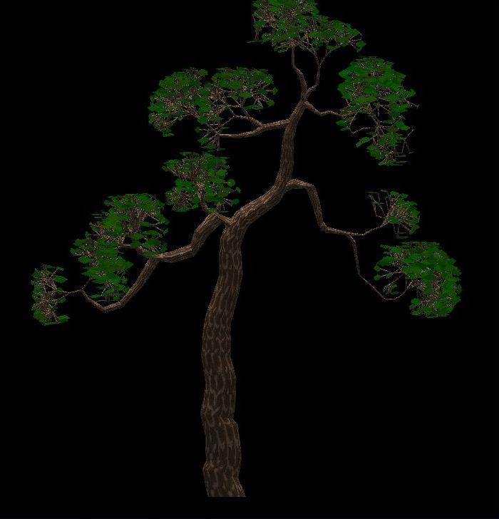 Software para diseño de bonsai 15u5qv