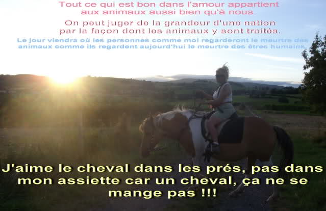Les cavaliers de la Loire 17ejqg