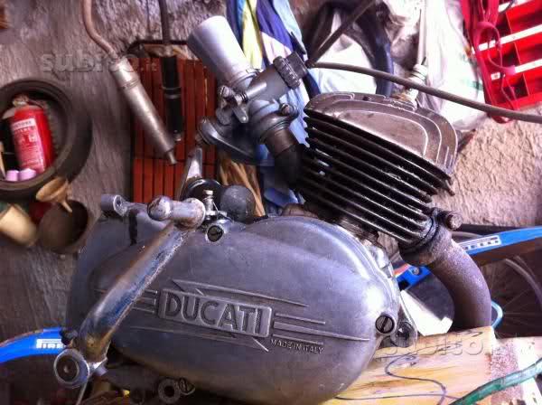 Mi nueva Ducati 48 - con vídeos - Página 3 2s16s76