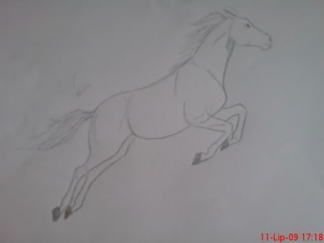 Crteži (vaši radovi)- samo slike Jqj1y1