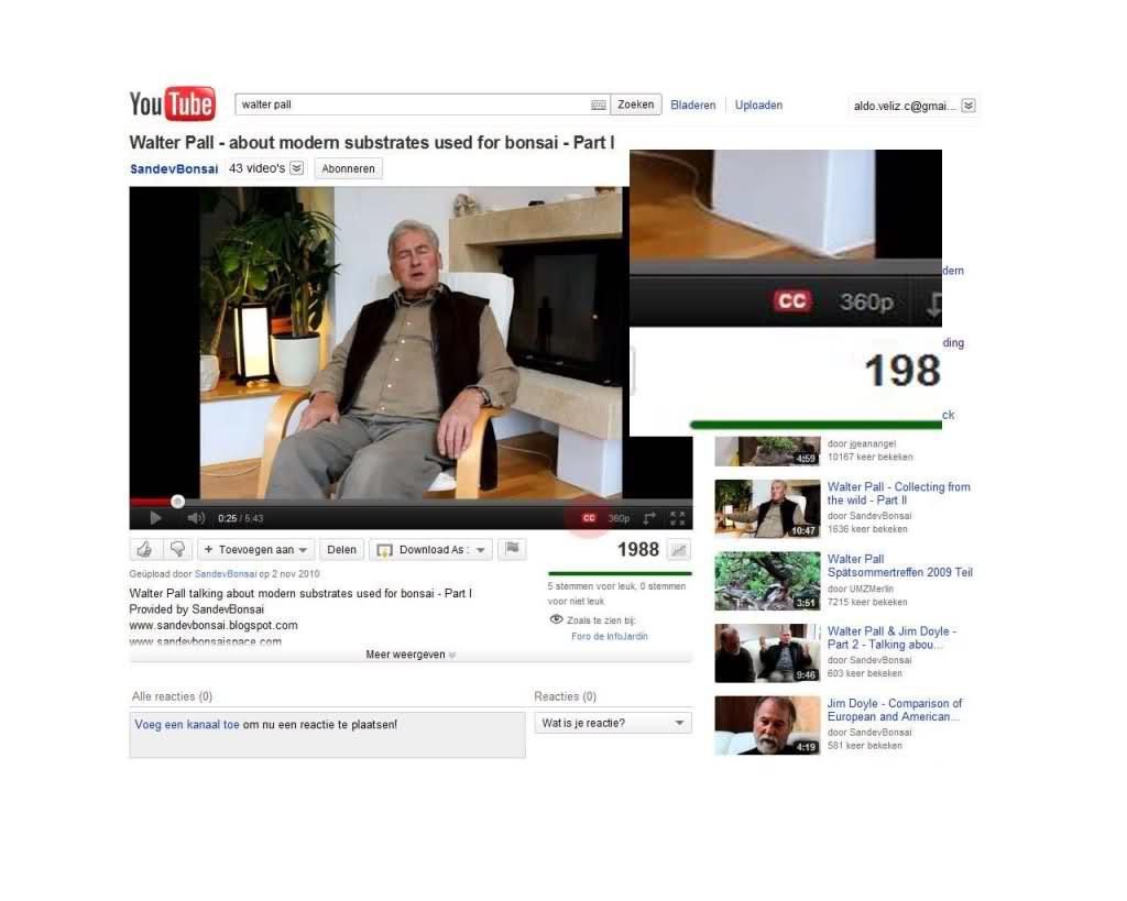 traducir videos de youtube a español Wso39z