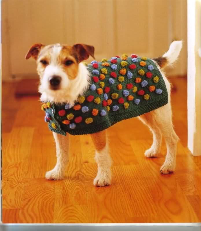 modelo de ropa para perros 1z2zv5c