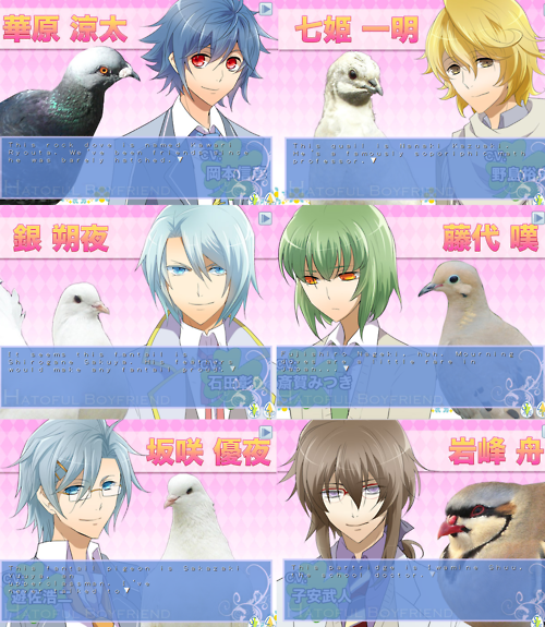 Hatoful Boyfriend [Descarga + Guía] 2ex7yg0